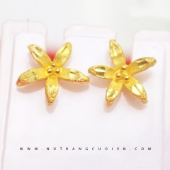 Beautiful Earring HBT8