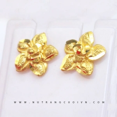 Beautiful Earring HBT20