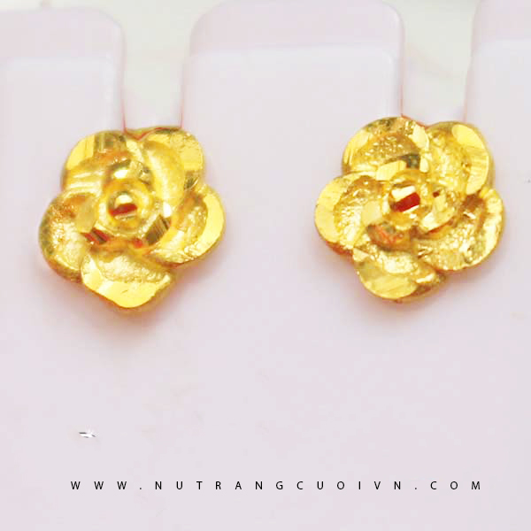 Beautiful Earring HBT17