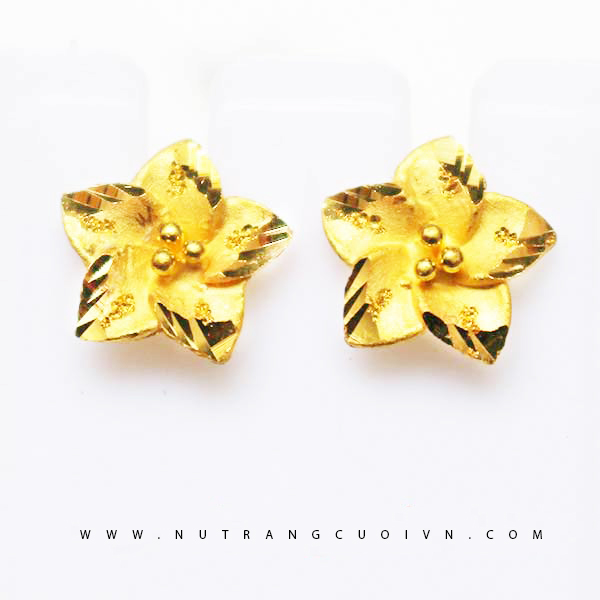Beautiful Earring HBT6