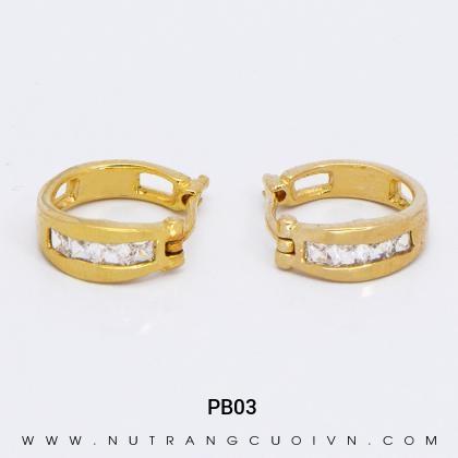 Bông Tai PB03