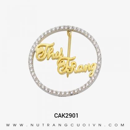 Logo CAK2901